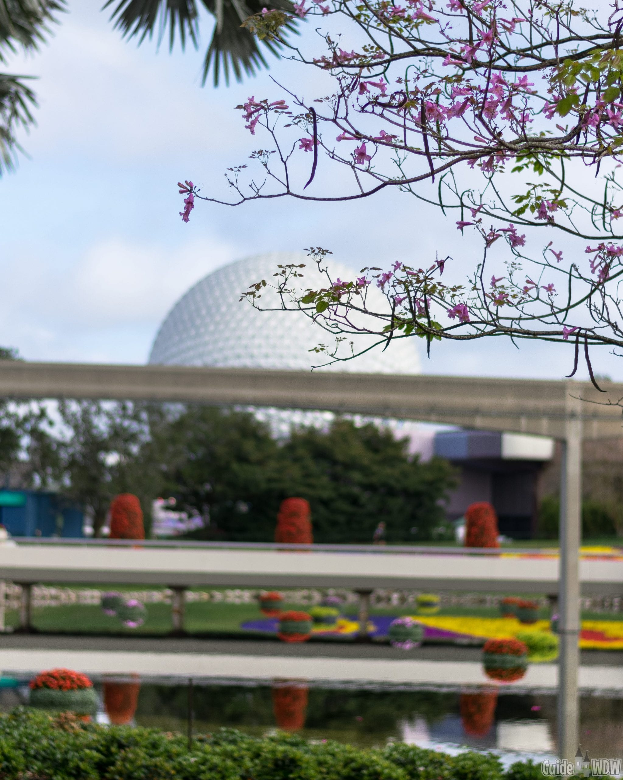 Epcot Flower and Garden Festival -Disney and Empathy